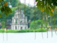 Trang chủ - Hà Nội - Ninh Bình - Bắc Ninh - Hạ Long