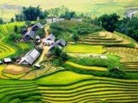 Trang chủ - Hà Nội - Ninh Bình - Hạ Long - Sapa - Đường Lâm [Tiết kiệm gần 4 triệu đồng]