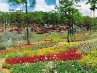 Trang chủ - Đà Lạt - thành phố ngàn hoa
